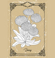 black and white drawing daisy vector image vector image