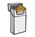 cigarettes packaging vector image