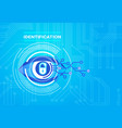 identification system retina scanning access vector image
