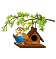 owl reading book by the birdhouse vector image vector image
