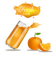 splashes glass orange vector image