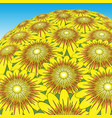sunflower bunch vector image vector image