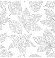 autumn seamless pattern with detailed leaves vector image vector image