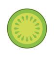 cucumber slice fresh on white background vector image