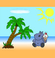 hippopotamus on the beach vector image