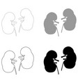 kidney the black and grey color set icon vector image vector image
