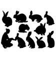 Set of different rabbits vector image