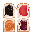 set of white toast bread vector image vector image