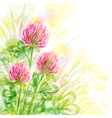 Background with flowers of clover vector image vector image
