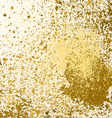 gold paint splash splatter and blob on white vector image vector image