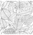 leaves tropical plants black and white outline vector image