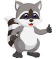 raccoon cartoon waving vector image
