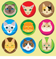 Set of 9 cats faces icons vector image