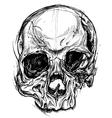 Broken Skull Drawing line work vector image