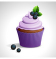 cupcake with black currant vector image vector image