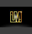 gold black alphabet letter lm l m logo vector image vector image
