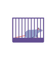 mouse placed in cage vector image vector image