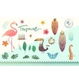 set of tropical plants and animals vector image vector image