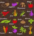 VegetablesGard vector image vector image