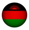 Malawi flag button vector image