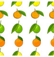 citrus seamless background lemons tangerines vector image