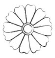 cute and beautiful flower vector image