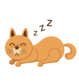 cute kitten sleeping vector image vector image