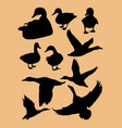 duck silhouettes vector image