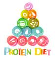 protein diet chart vector image vector image