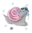 realistic snail on the vector image vector image