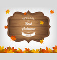 autumn background with maple leaves and wooden vector image vector image