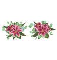 floral bouquet design set tender pink vector image vector image