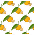 mandarin orange with segment colored hand drawn vector image vector image