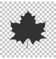 Maple leaf sign Dark gray icon on transparent vector image vector image