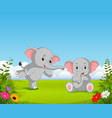 natural view with two grey baby elephant vector image vector image