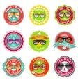 Sun glasses summer sale labels vector image vector image