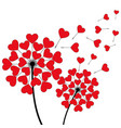 two dandelion heart shaped on white vector image