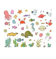 big set marine sea theme cute cartoon turtle vector image