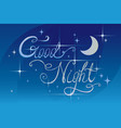 good night lrttering vector image vector image