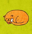 Sleeping Cat Cartoon vector image