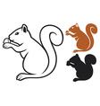 squirrel with hazelnut vector image