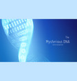 abstract blue dna double helix vector image vector image