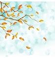 autumn foliage background vector image vector image