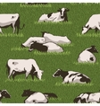 Cowcolorpattern vector image vector image