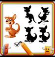 find the correct shadow cartoon funny kangaroo e vector image vector image