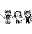 modern black and white kittens part 6 vector image vector image