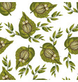 seamless pattern with colorado beetle vector image
