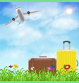travel bag on grass flower with airplane in sky vector image vector image