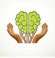 tree brain concept the wisdom of nature vector image