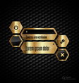 Gold Layout vector image